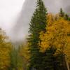 1271  G Rainy GTS Road View Soft V