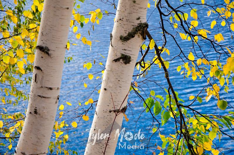 1861  G Birch and Lake McDonald