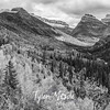 1824  G Glacier in Fall Wide BW