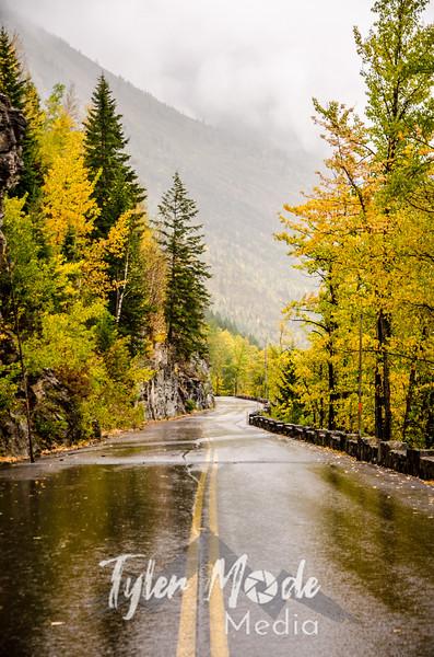 1247  G Rainy GTS Road Sharp V