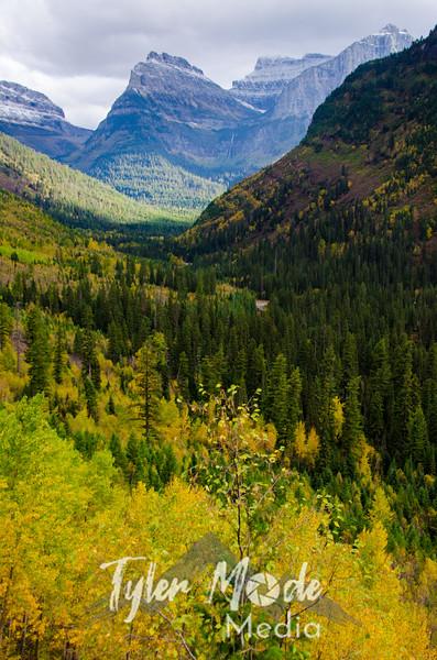 1829  G Glacier Views V