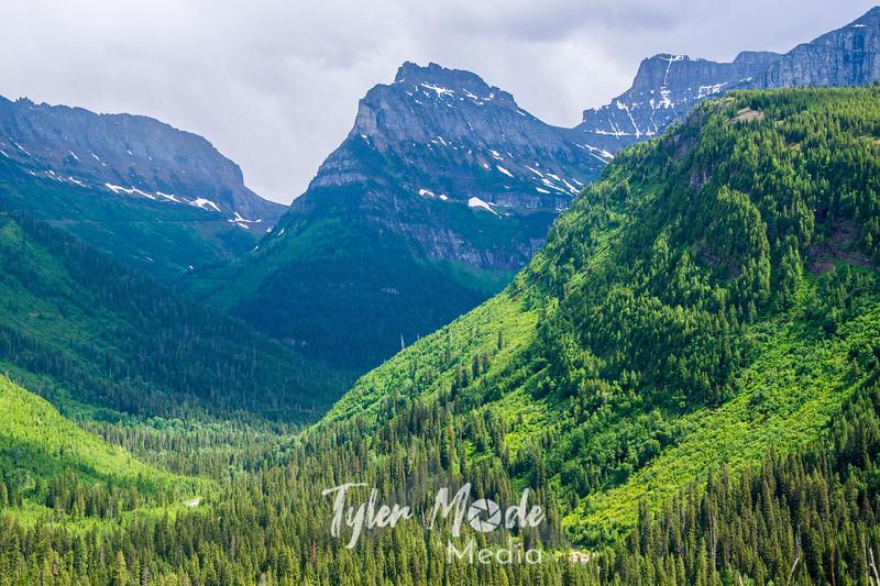 2089  G Fresh Rain Glacier