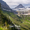 1599  G Toward Logan Pass Bear Grass