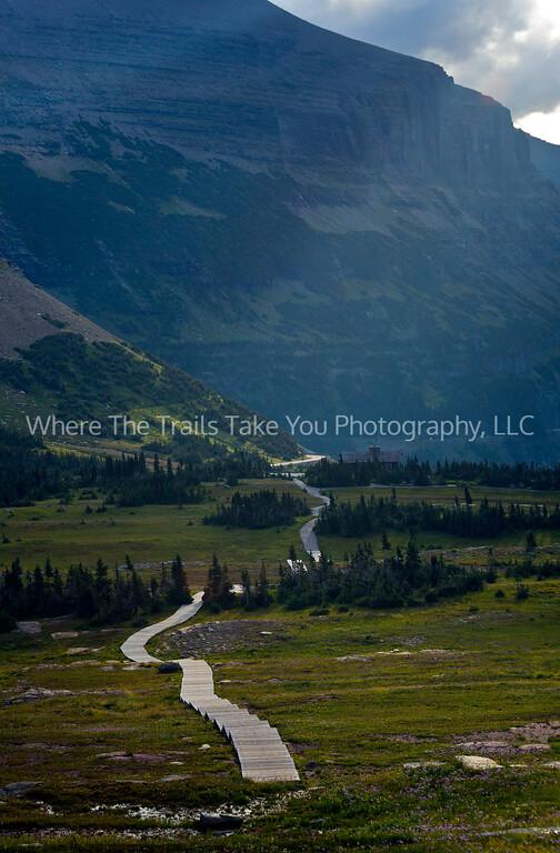 81  Along The Boardwalk, Logan Pass, Glacier National Park, Montana