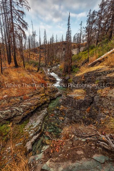 107.  Baring Creek
