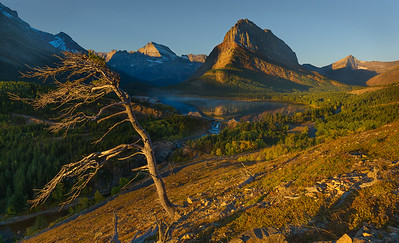 Overlooking Swiftcurrent Lake
