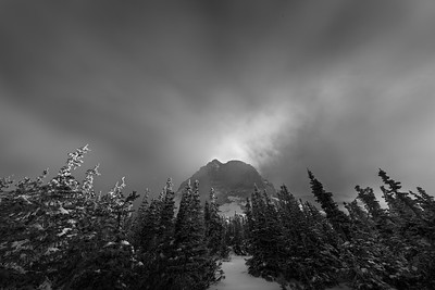 At the Logan Pass