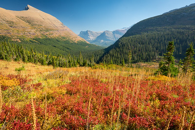 Glacier NP, Sunrise at Many Glacier, Hike at Iceberg Lake Trail, Moose at Fishcap Lake along the Swiftcurrent Trail.