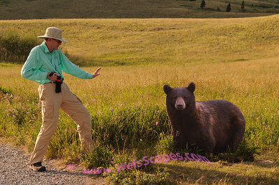 After seeing several bears, this cutout bear just over the crest in the hill, just about gave me a heart attack.  Time for some payback!   Note, no bears were harmed shooting this photo.