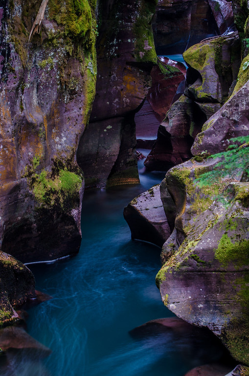 Avalanche Creek, Glacier National Park, Montana