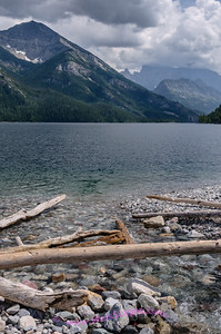 Driftwood on the shoreline of Upper Waterton Lake, Glacier International Peace Park, Alberta Canada.