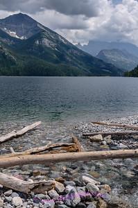 Driftwood on the shoreline of Upper Waterton Lake, Glacier International Peace Park, Alberta Canada.