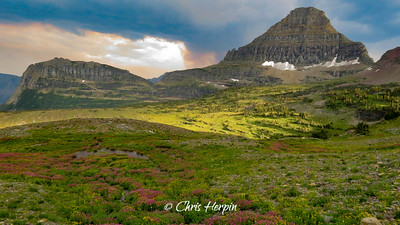 Logan Pass - Glacier National Park, Montana
