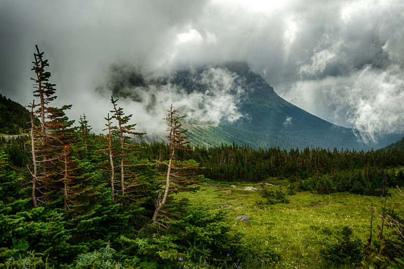 View from Logan Pass ranger station<br /> Glacier National Park