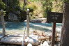 Cataract Creek-1675