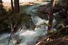 Avalanche Creek-1614
