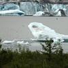 "Taken at Latitude/Longitude:58.419255/-134.545968. 3.27 km North-East Mendenhaven Alaska United States <a href=""http://www.geonames.org/maps/google_58.419255_-134.545968.html""> (Map link)</a>"