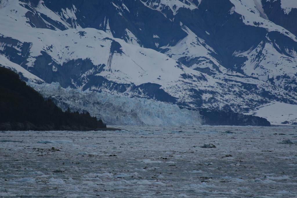 Turner Glacier, Yakutat Bay, Alaska