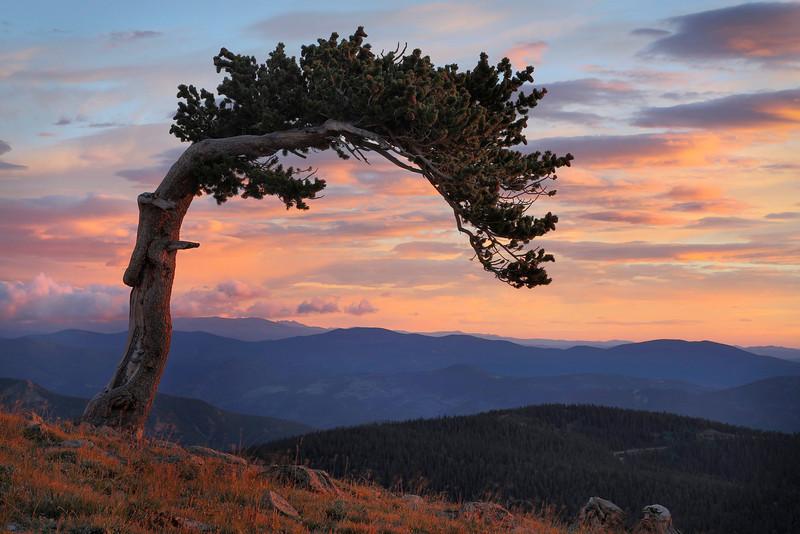 Sunrise Mt. Evans