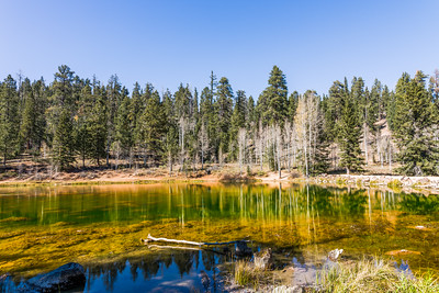 Mirror Lake, Dixie National Forest, Utah