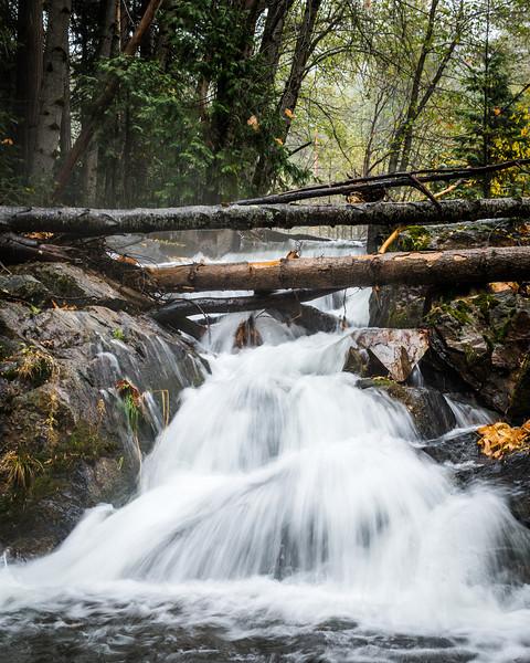 Cascade: Bear River