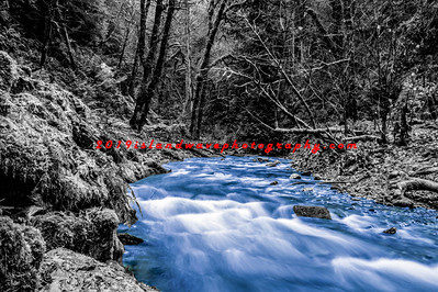 B&W, blue water, Goldstream Park-2