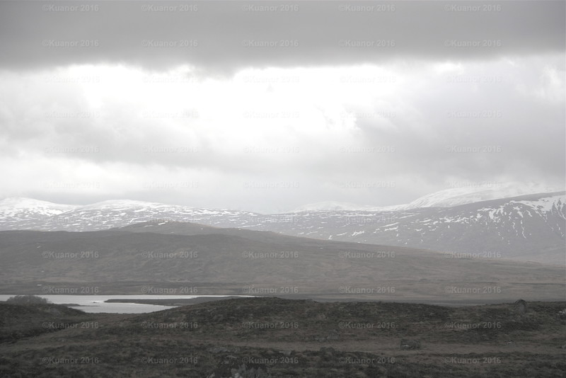 Bleak<br /> The largest moor in the British Isles presents a cold, hopeless picture in early winter, suggesting a hard season approaches. In truth, for the following winter turned out to be one of the heaviest on record.