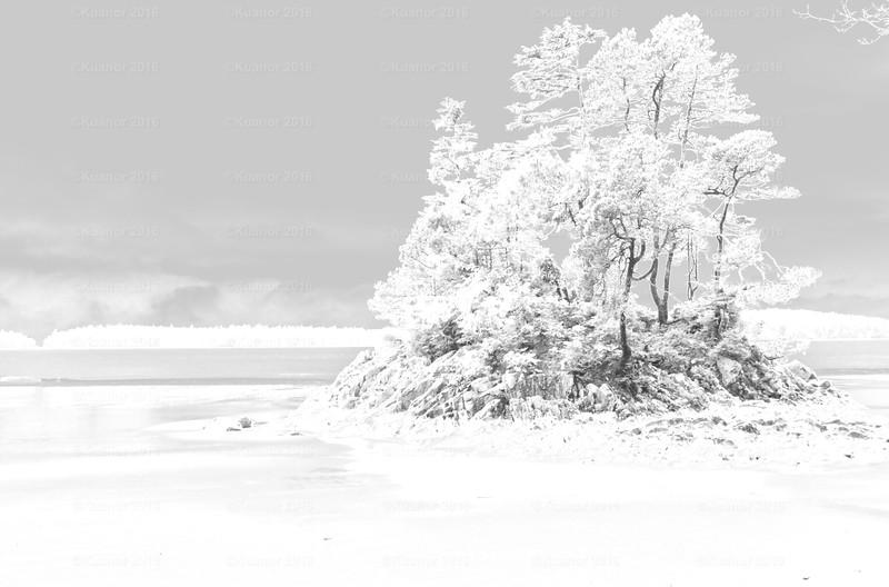 Snowy Isle