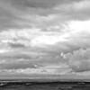 Grey Horizons