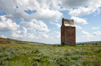 The Alberta Pacific Grain Co. Ltd Elevator, Dorothy Alberta