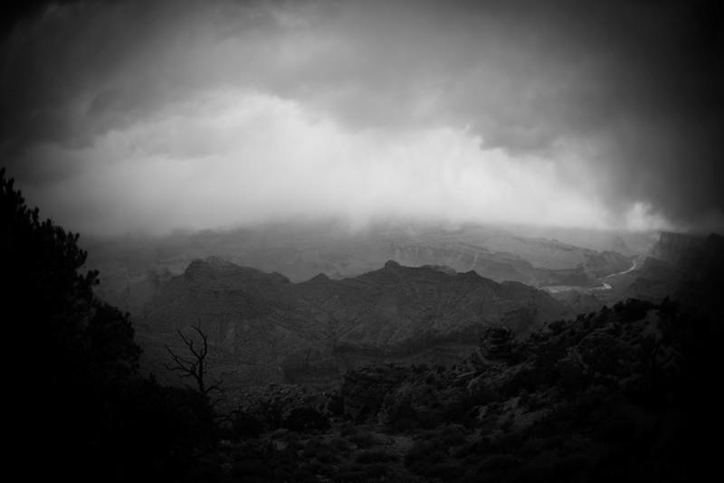 Desert View