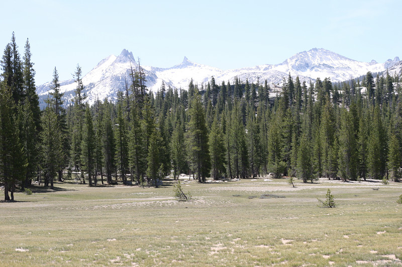 Starting the hike out at Tuolumne Meadows