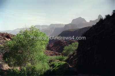 Near Indian Gardens on Bright Angel Trail, Grand Canyon National Park