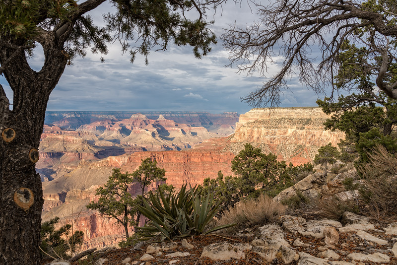 20180713-Grand Canyon-0087-Edit