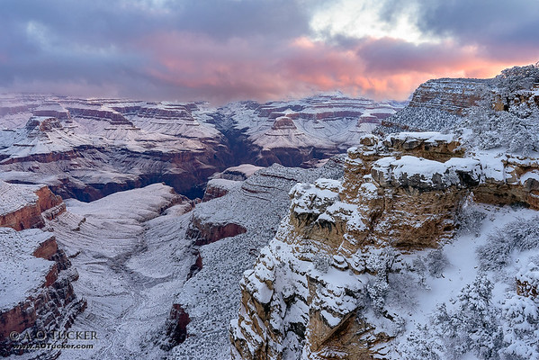 Canyon Of Rock And Snow