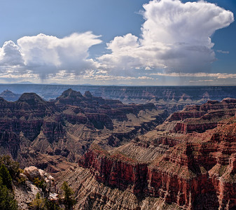 Angel's Anvil  Anvil shaped thunderclouds roll across the horizon Bright Angel Point, Grand Canyon National Park, Arizona, USA