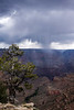 Canyon Cloudburst