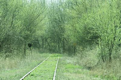track green