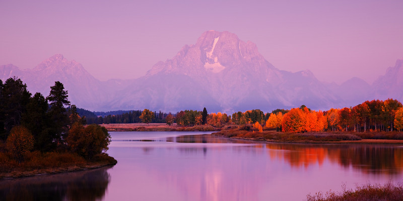 Oxbow Bend and Mt. Moran in Early Morning Light