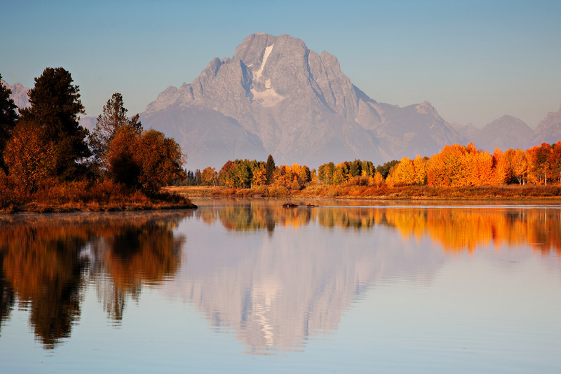 Two Moose Swim Across Oxbow Bend