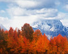 Mount Moran in Autumn