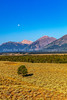9.  Grand Teton Morning Moon And Scenery