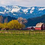 """Farm in the Grand Tetons"" - Spring. Jackson Hole, Wyoming."