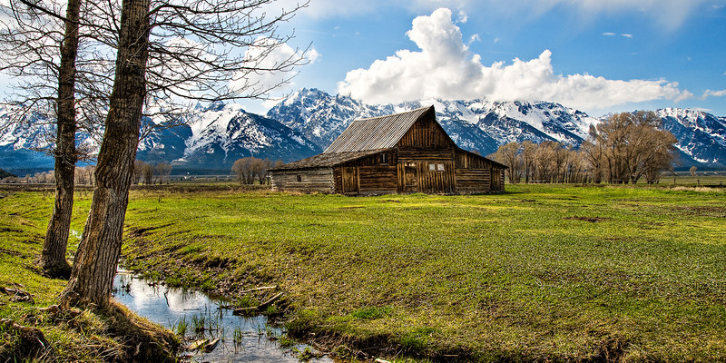 """""""Mormon Row Barns in the Grand Tetons"""" Grand Teton National Park near Jackson Hole, Wyoming.  My parents went out to the Grand Tetons, so I decided to head out and take pictures!  You can't go wrong with free accomodations!  Unfortunately, this was one of the few times during the week you could actually SEE the Grand Tetons!  This was captured in the spring just after the snows were clearing. I decided to go with a pano view with the trees on the left just for something different. Just nice texture on the barn and the mountains in the background!"""