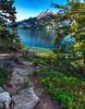 The View At Jenny Lake