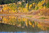Fall color reflection at Grand Teton National Park