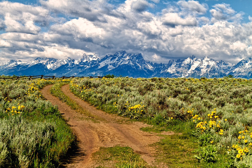 View of the Grand Tetons from Buffalo Ridge