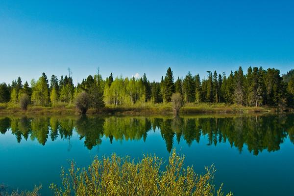 Grand Tetons and Yellowstone