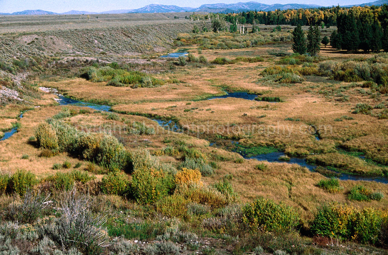 Valley streams in the Teton Valley in Oct. Shot on Kodachrome.