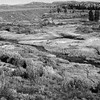 Valley streams in the Tetons in Oct. Monochrome